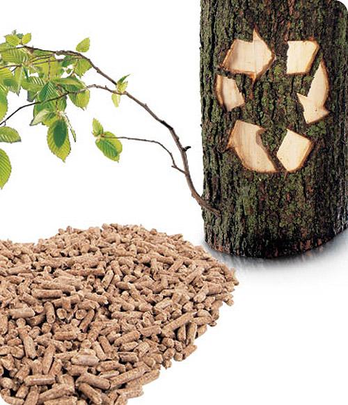 Biofuel in russia pellets not wood Российский