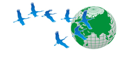 Российский социально экологический союз
